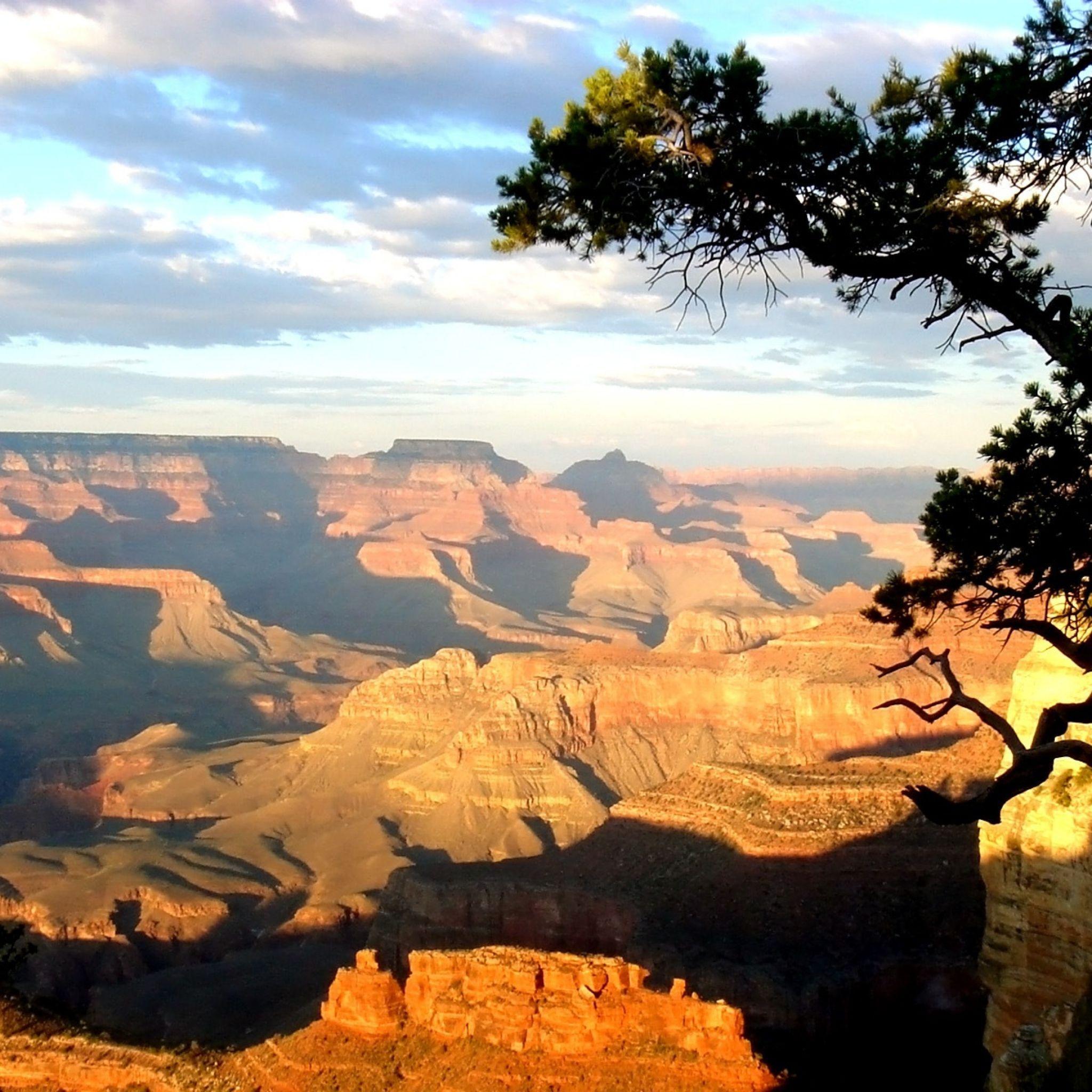 Good Wallpaper Mac Grand Canyon - d4cf8430022d2947e920d4aa01a9d664  Best Photo Reference_169663.jpg
