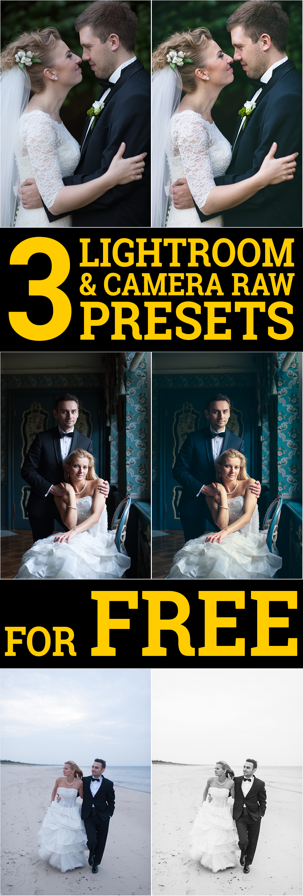Download Perfect Presets for Camera Raw - …
