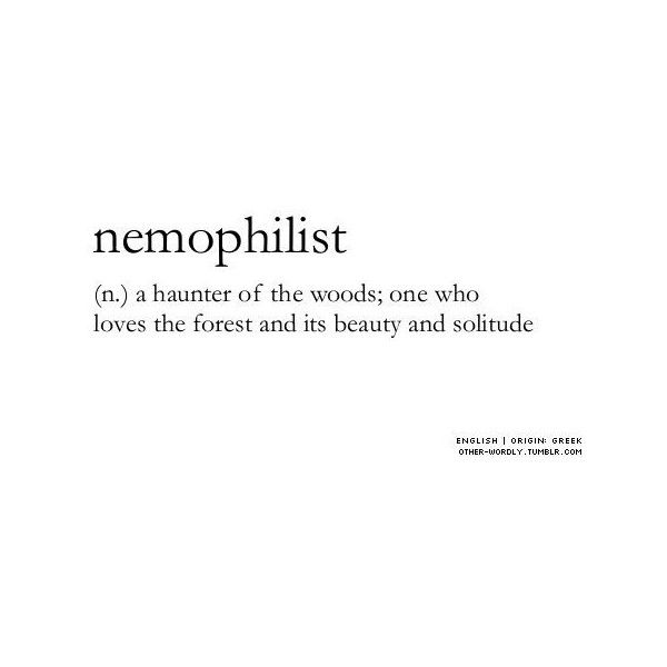 Pinterest ❤ liked on Polyvore featuring words, quotes ...
