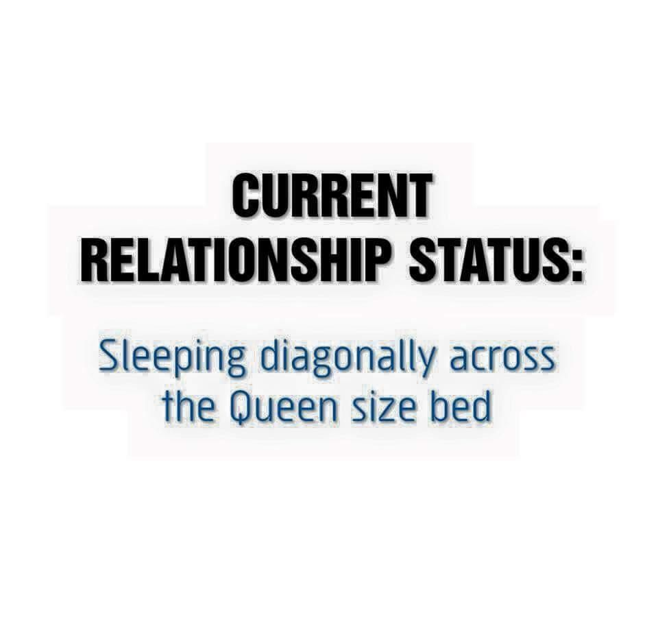 Current Relationship Status Dating Humor Quotes Single Quotes Funny Funny Quotes