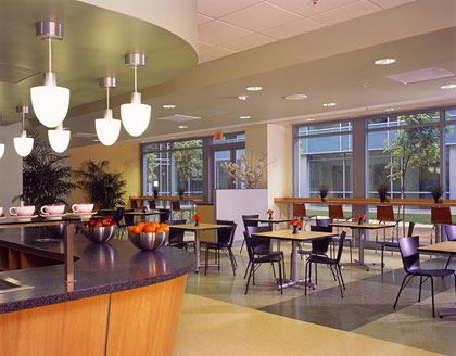 Office Cafeteria Design Enchanting Model Paint Color New In