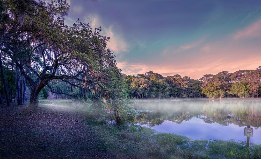 This is Chesnut Park in Florida I love this place I took some cool photos walked quite a while before to find this perfect spot with this composition and I went for a not too saturated look. Do you guys like this more subtle look? #photoserge #landscape #naturallook #view #tree #fog #lake #water #florida