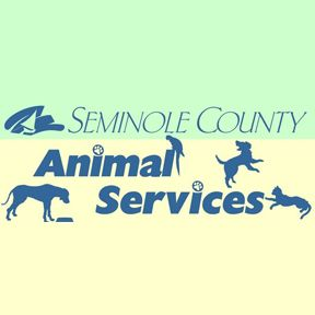 Contact them today to adopt a pet.   http://www.seminolecountypets.com, (407) 665-5201.