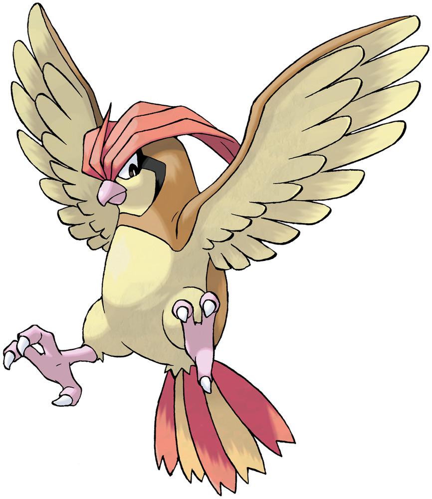 Pidgeotto Pokedex Stats Moves Evolution Locations Pokemon Database 151 Pokemon Pokemon Firered Original 151 Pokemon