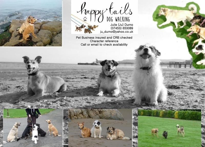 Pin on Happy Tails