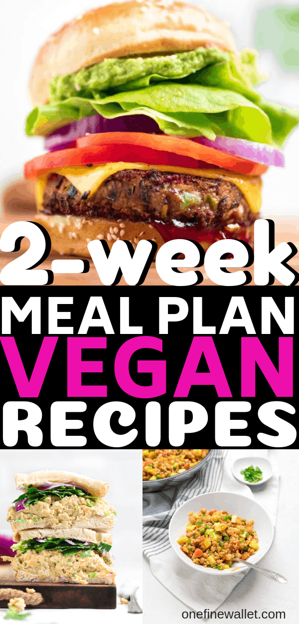 2 Week Vegan Meal Prep Dinner Recipes Bloggers Recipe