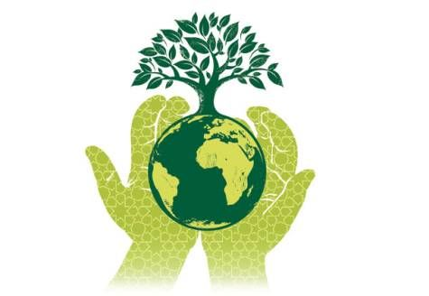 003 graphics Conscious Green Sustainable Essay contests