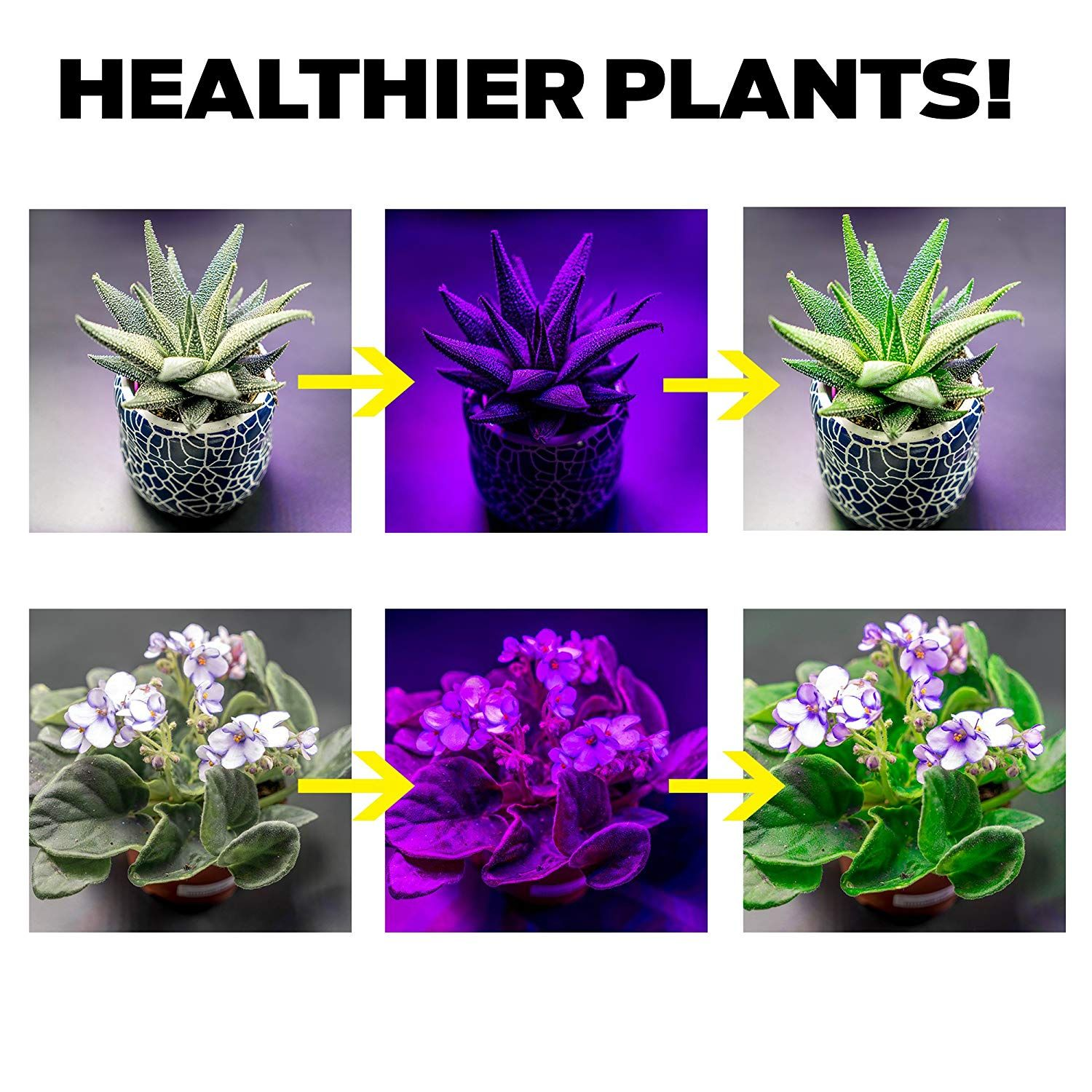 What Does Full Spectrum Mean As You Can See In This Image Pigments From Plants Absorb Light At The Ends Of The Spectrum Wh Grow Lights Plants Indoor Plants