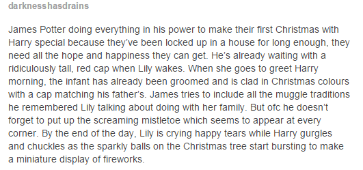 James and Lily - First christmas with Harry