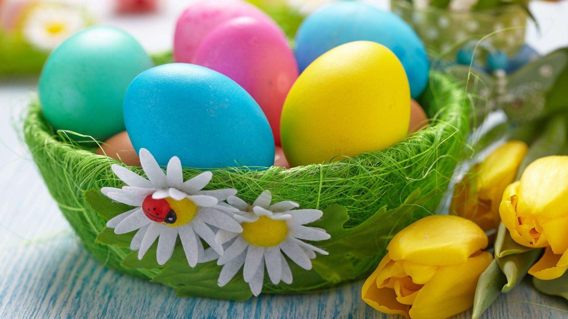 Great Basket Flowers Tulips Easter Easter Eggs Wallpaper