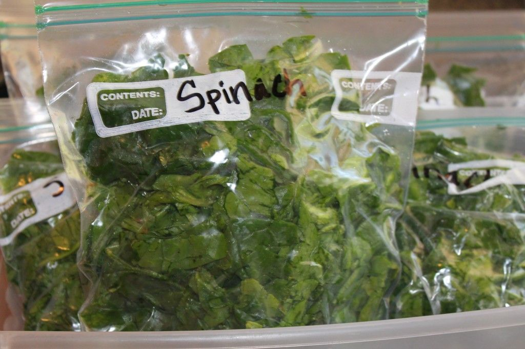 How to freeze spinach (and kale?). Wash, dry, and freeze