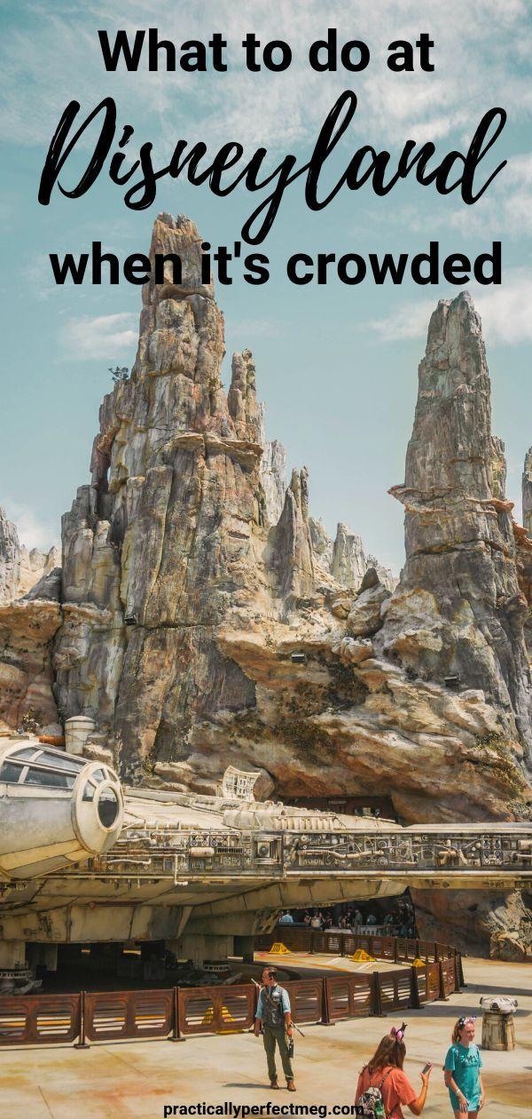 Photo of Wo tun, wenn Disneyland überfüllt ist?