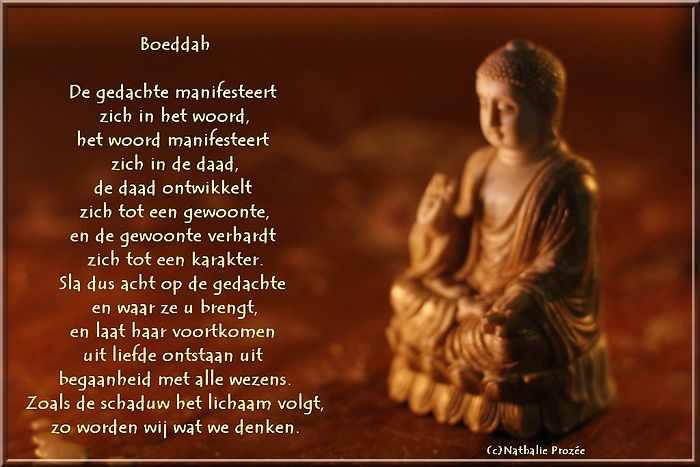 boeddha spreuken Afbeeldingsresultaat voor boeddha spreuken | Boeddha info  boeddha spreuken