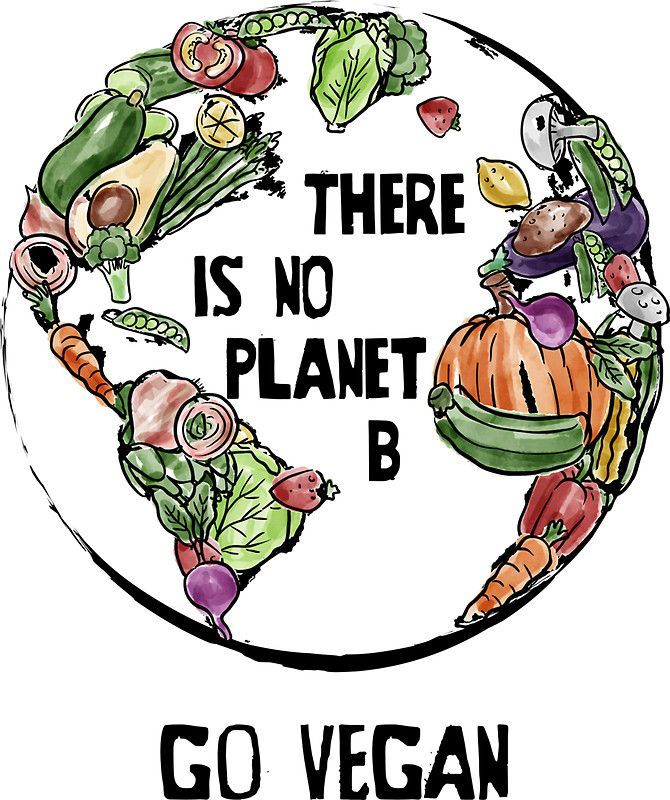 'There is No Planet B - Go Vegan' Sticker by yeoys