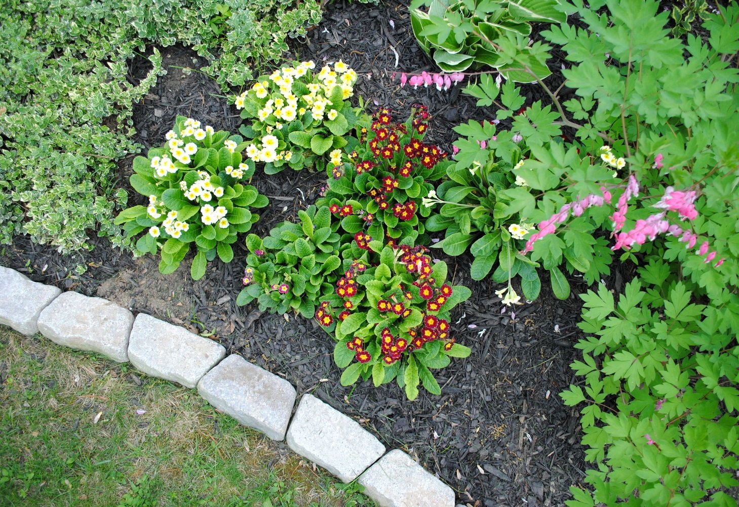 The Perfect Border for Your Beds: Defining a Garden's Edge