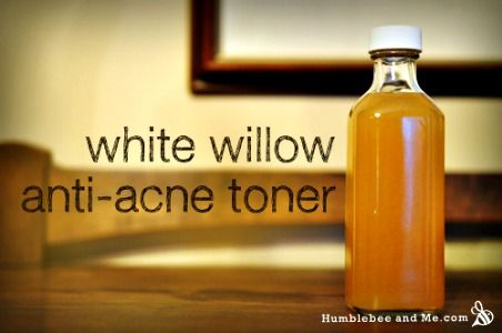 How to Make a White Willow Bark Anti-Acne Toner (recipe)