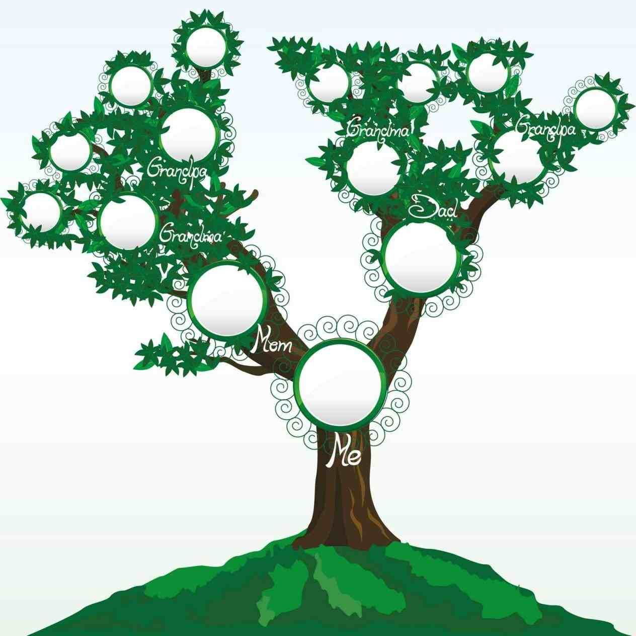Family Tree Template For Kids In Spanish Ngorongub Clipart