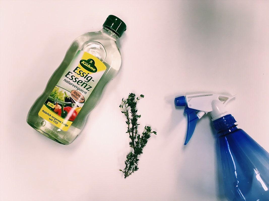 Naturliches Desinfektionsmittel Aus Essig Und Thymian Cleaning