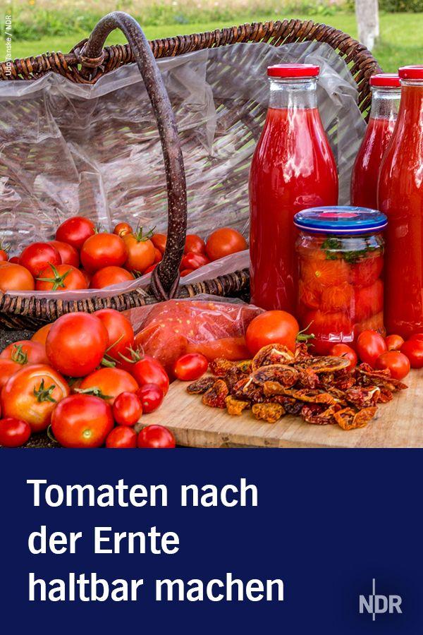 Tomaten Nach Der Ernte Haltbar Machen Tomaten Haltbar Machen Tomaten Einkochen Tomaten