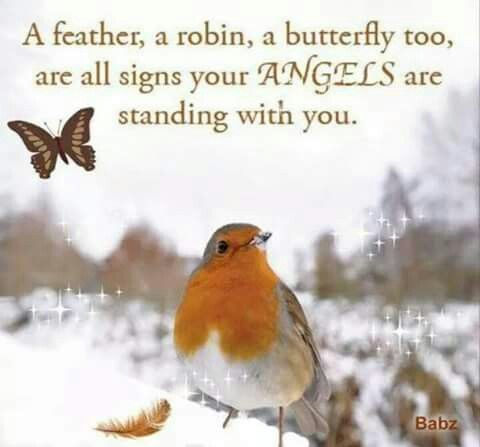 ○´з`)♡ | Grief | Angel quotes, Signs from heaven, Angel