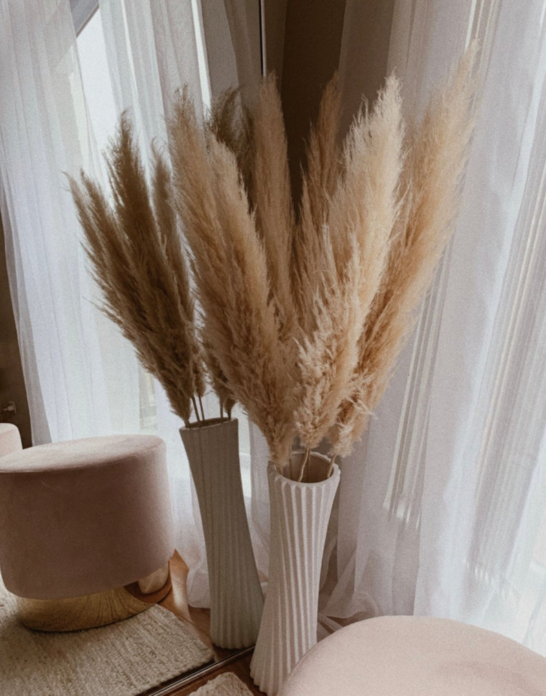 BEST PRICE   Extra Large Dried Pampas Grass 21