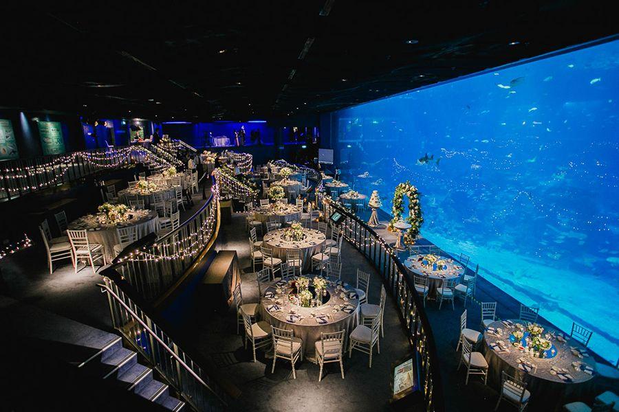 Ethan And Priscila S Ocean Gallery Wedding At Resorts World Sentosa S S E A Aquarium Aquarium Wedding Aquarium Wedding Reception Dallas Aquarium Wedding