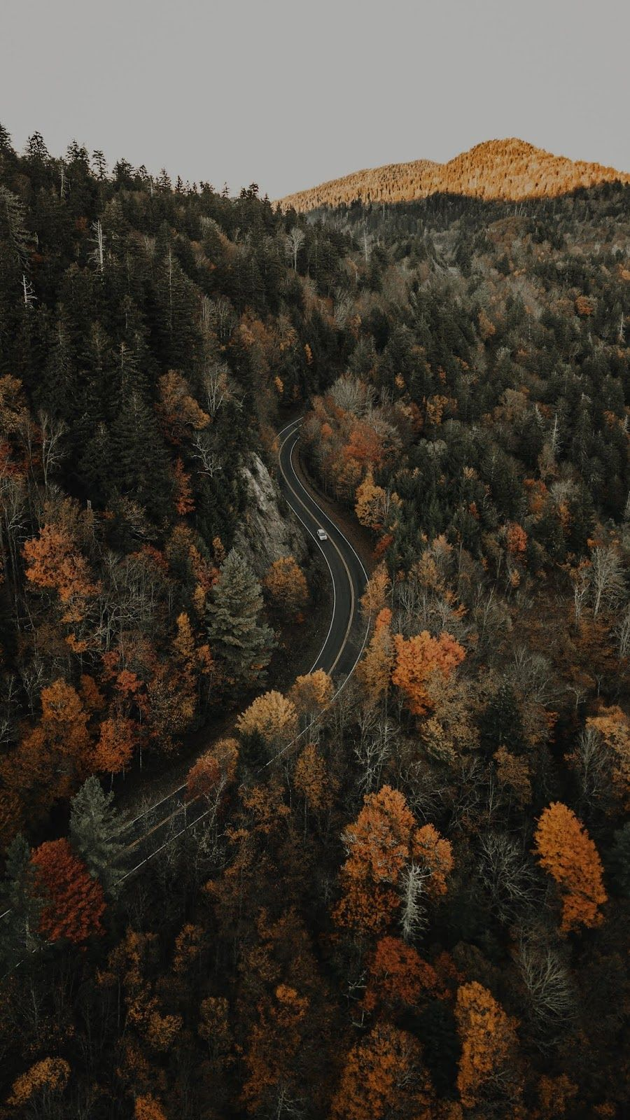Forest Road Aerial View Mobile Wallpaper Aerial View Forest Road Aerial Hd wallpaper mountain road aerial view