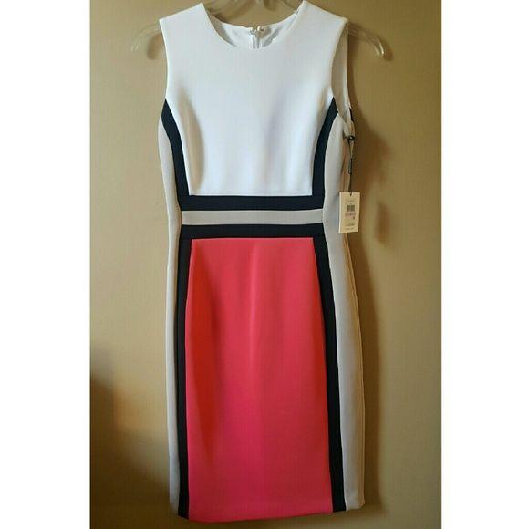 Calvin Klein Colorblock Dress Boutique My Posh Picks Dresses
