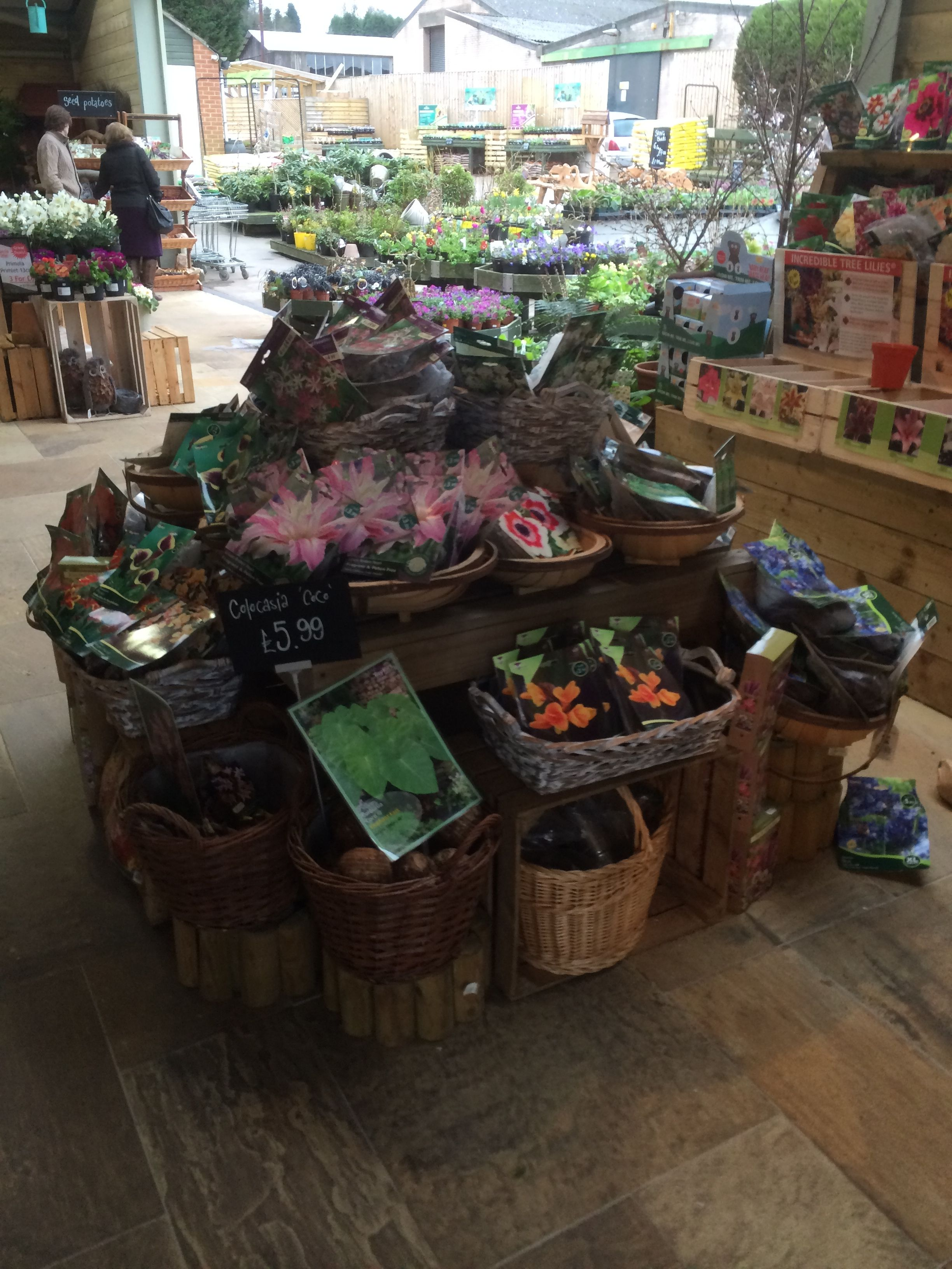 Timmermans Garden Centre Nursery Outdoor Retail Home Lifestyle Plants Visual Merchandising Layout Landscape