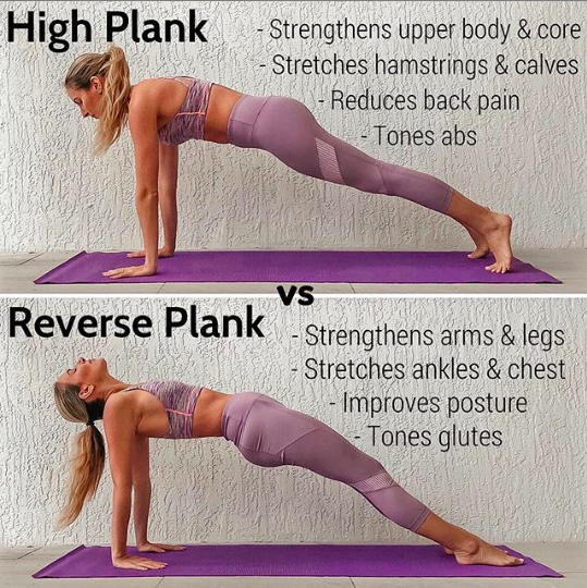 High Plan vs. Reverse Plank #exercisesforupperback