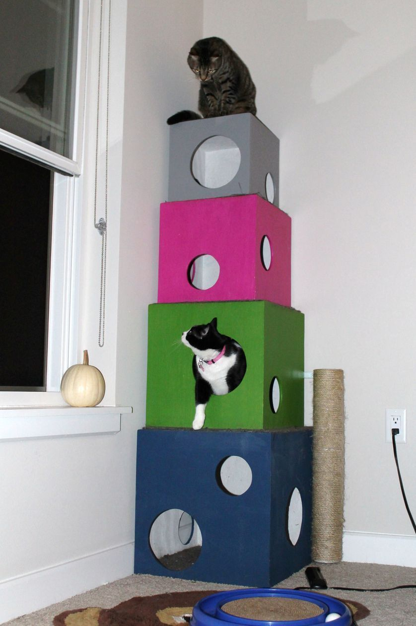 Plywood Cubes And Carpeting Are The Basis For These Kitty Condo Cathouseplywood Diy Cat Tree Cat Diy Diy Cat Toys