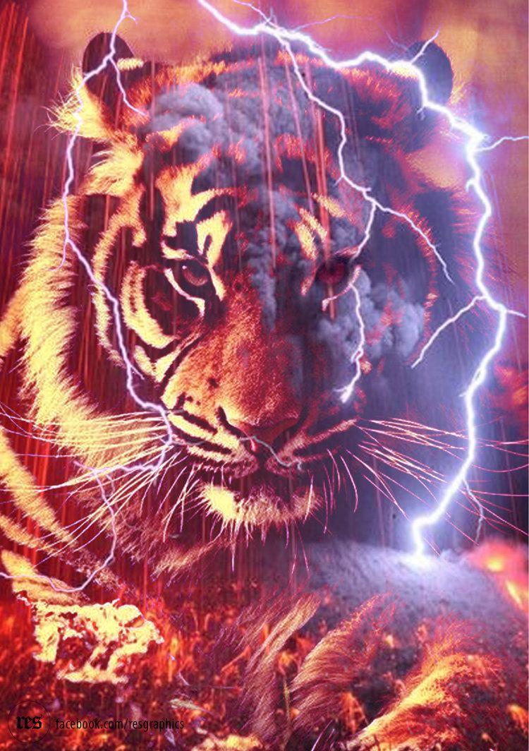 Red Tiger By Resresres Tiger Artwork Tiger Pictures Tiger Art