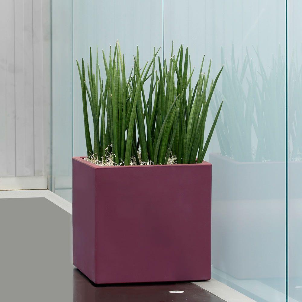 Vaso momus per interno e giardino vasi for Vaso da interno moderno