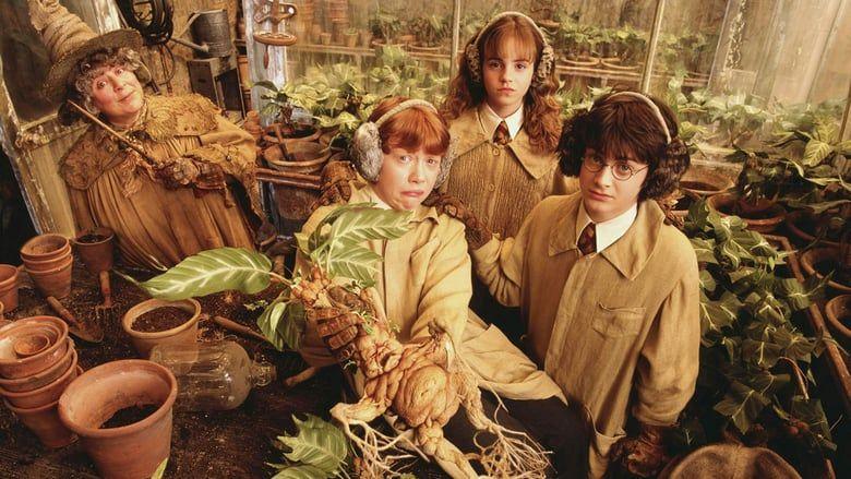 Harry Potter Und Die Kammer Des Schreckens 2002 Ganzer Film Stream Deutsch Komplett Online Harry Potter Und Harry Potter Film Kammer Des Schreckens Ganze Filme