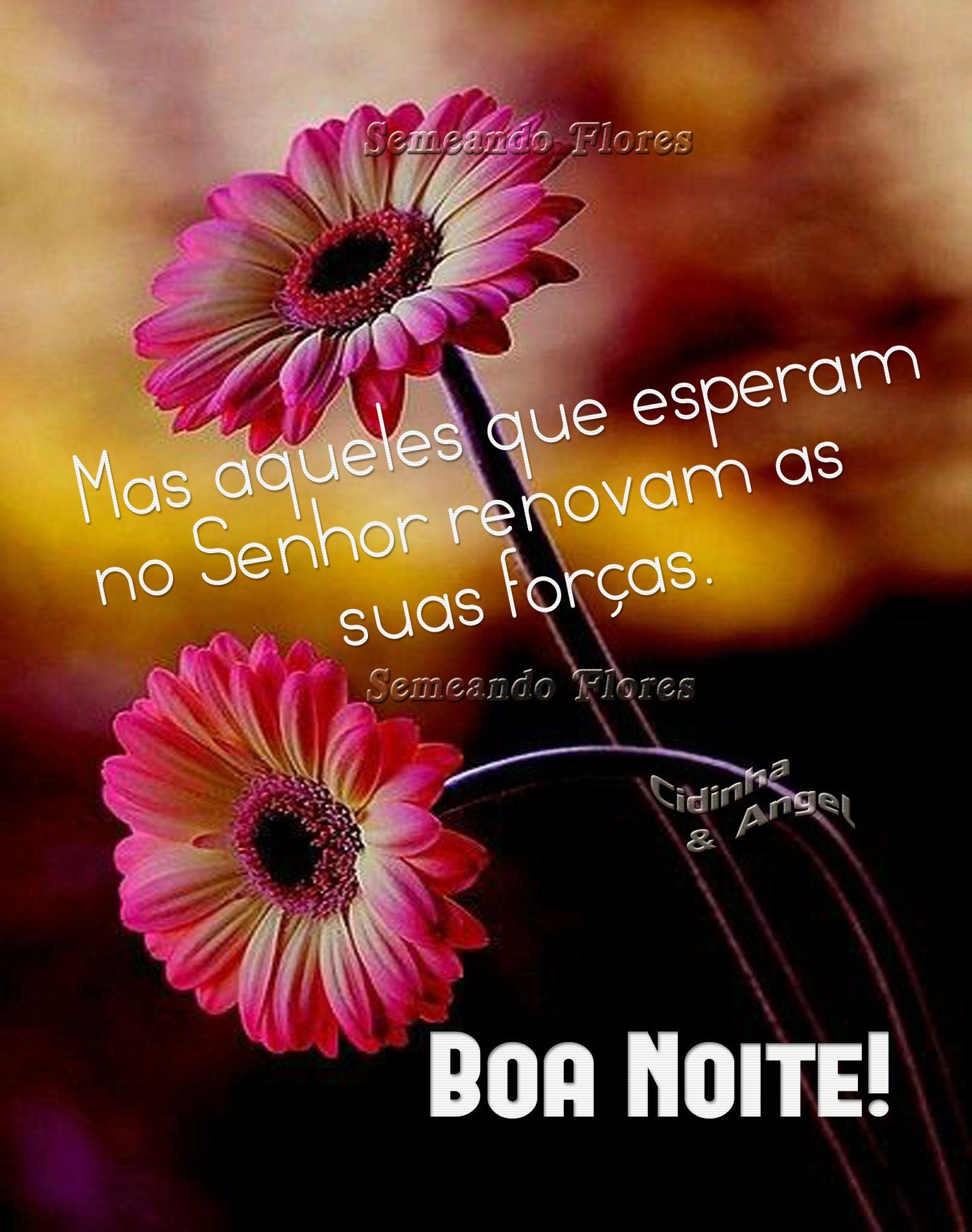 Pin De Eliana Santos Em Mensagem De Boa Noite Em 2020 Com