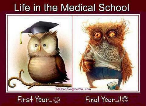 Will having attended a community college ruin my chances of getting accepted to Medical School?