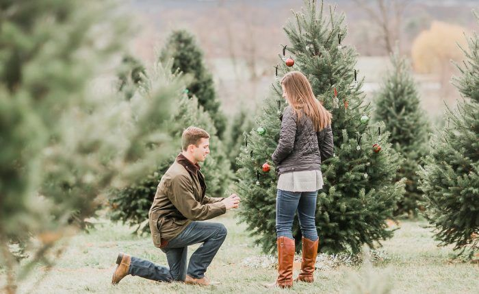 Paige And Aj S Christmas Tree Farm Proposal On Howtheyasked Com Tree Farm Proposal Tree Farms Christmas Tree Farm