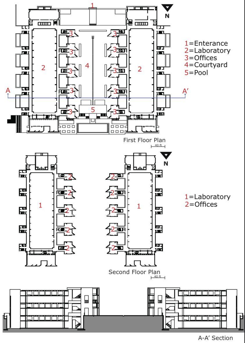 Louis kahn salk institute plans section