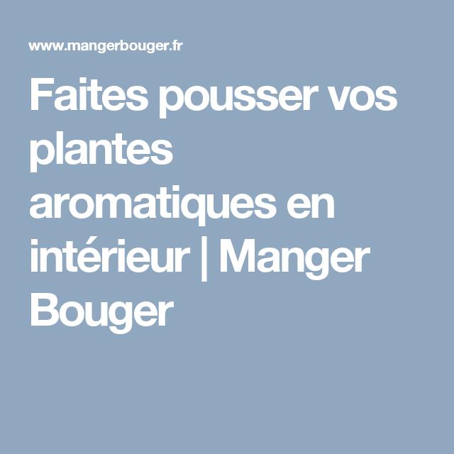Faites pousser vos plantes aromatiques en intérieur   Manger Bouger