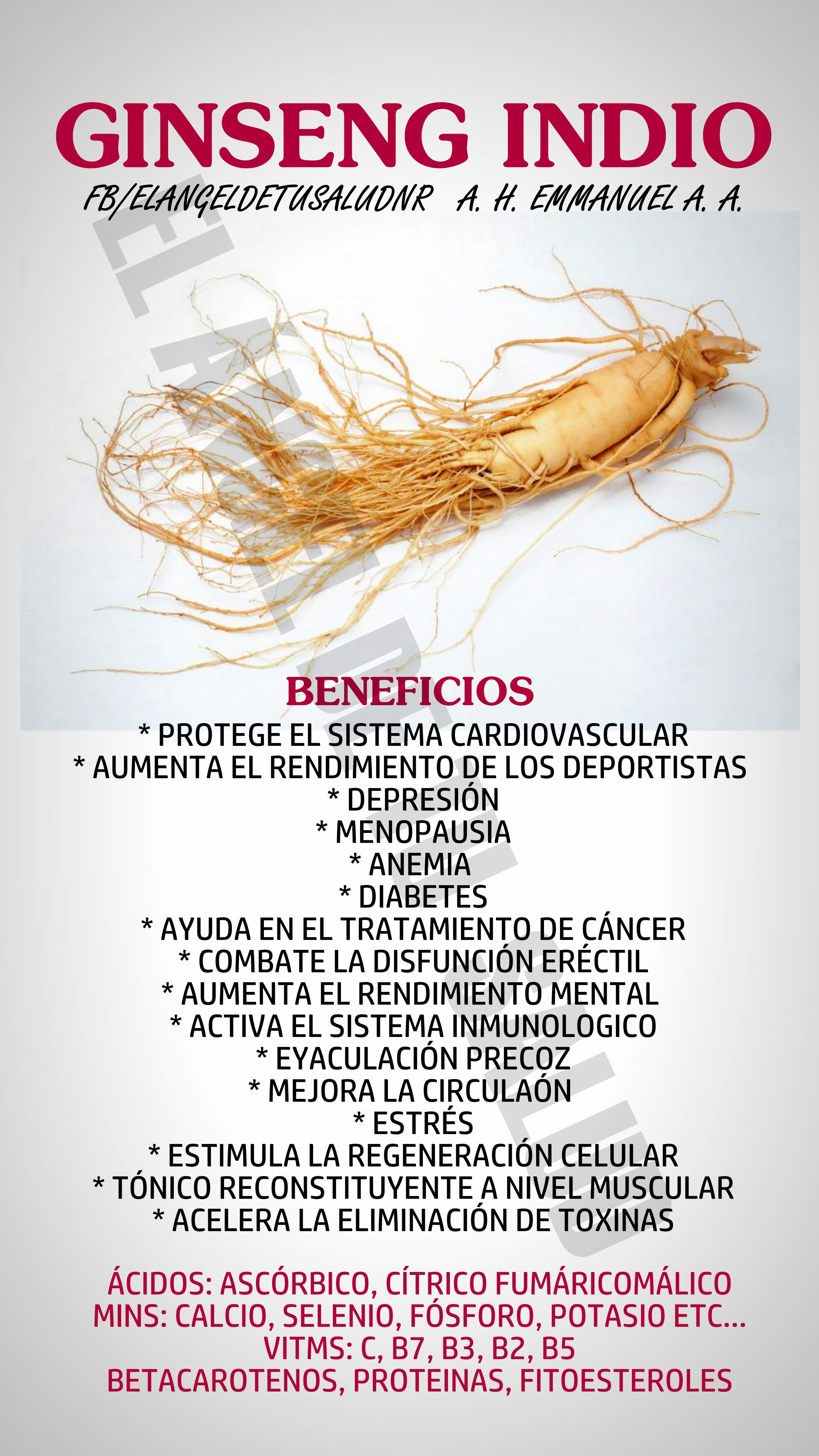 Beneficios Ginseng Indio Medicina Natural Nature