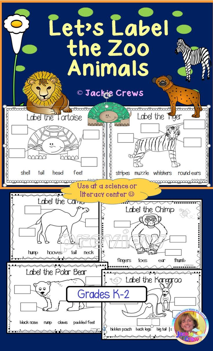 Feedback Is Beautiful This Product Is Great For A Follow Up To A Zoo Trip Or As A Writing Center During Your Litera Zoo Animals Vocabulary Activities Literacy [ 1212 x 736 Pixel ]