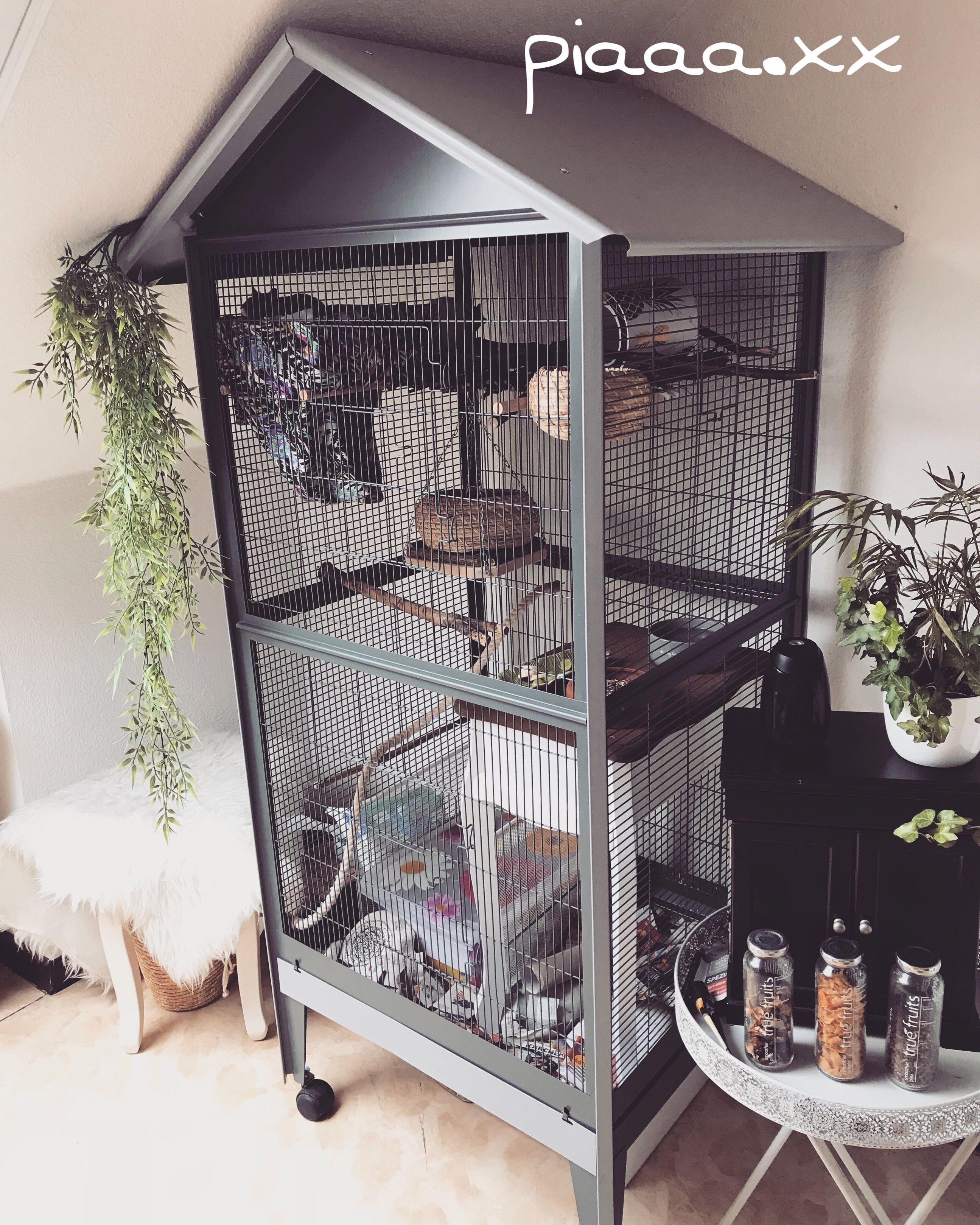 Rattenkafig Kafig Rattenideen Diy Pet Cage Rat Cage Home