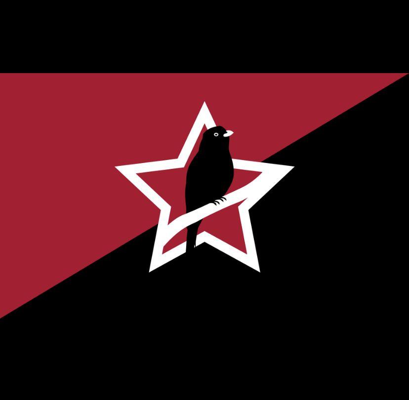 Anarcho Communist Haiti Art Poster Movie Posters
