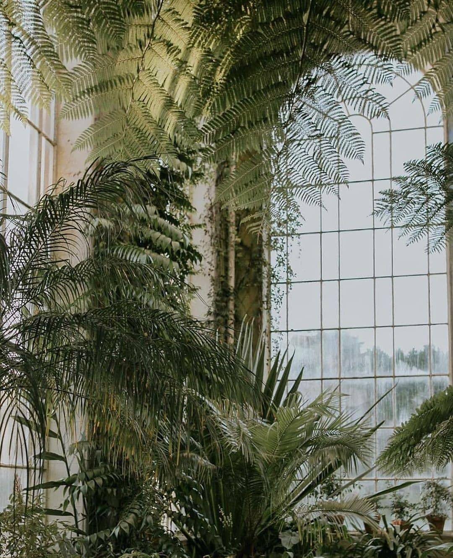 d4e216183faf5a1f846b8a884e1a56fd - Places To Eat Near Botanic Gardens Edinburgh