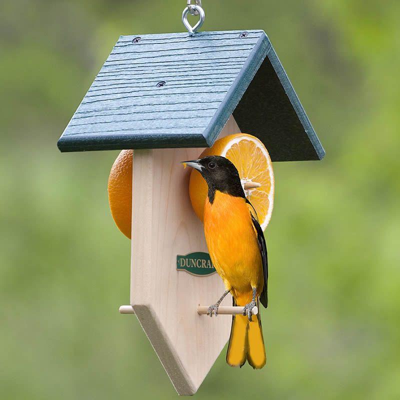 Fruit Feeder   Decorative bird houses, Wooden bird feeders, Diy bird feeder