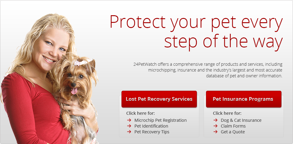 A Service For Caring For Your Pets Microchip Recovery Service For Lost Pets And Pet Insurance 24petwatch Pet