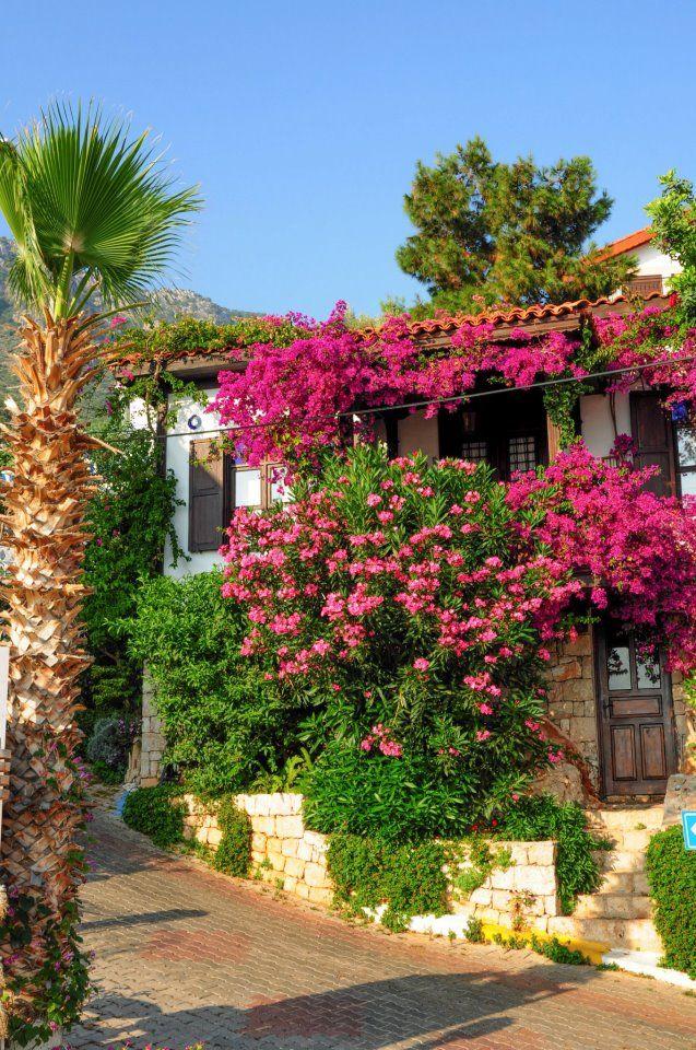Antalya  http://www.sevgimustafaresmiwebsitesi.com/