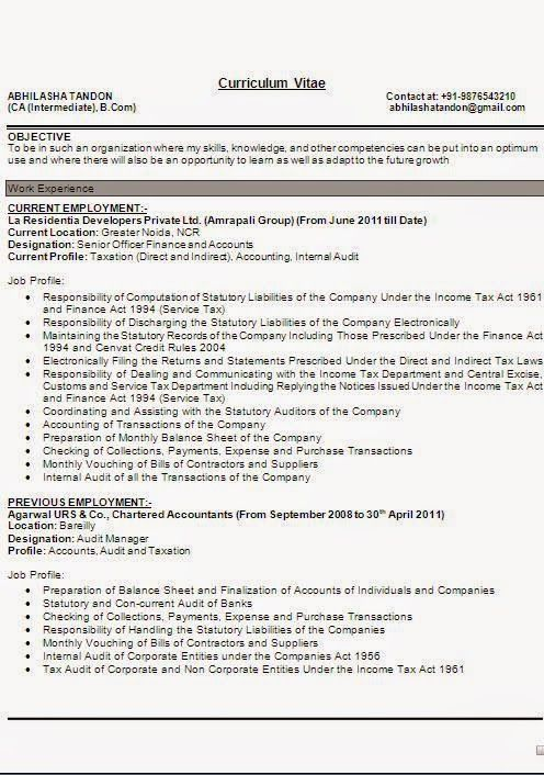 example of resume writing Excellent Curriculum Vitae / Resume / CV ...