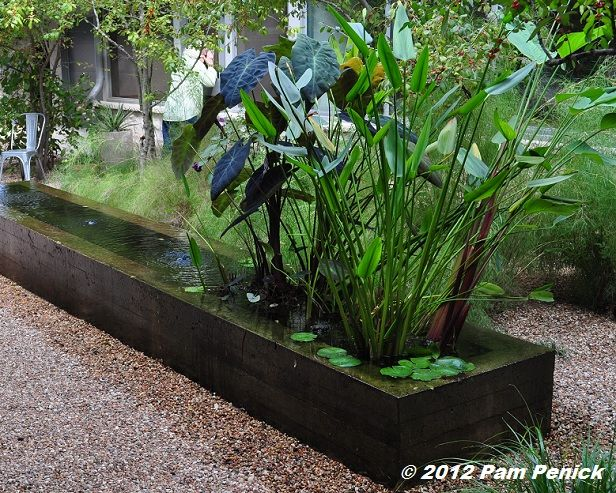 A sunken gravel garden between the house and guest house for Garden pond gravel