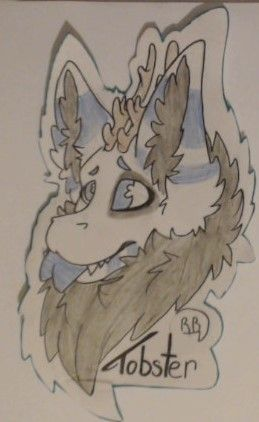 Tobster Badge Furry Dutch Angel Dragon My Drawings Furry Art